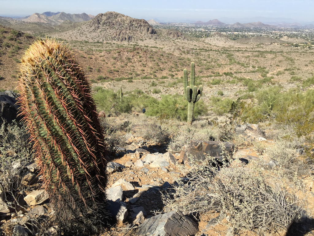 Hiking the trails outside Phoenix, Arizona